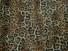 Mixed Animal On Glitter Stretch Net(KR) - Black/Gold/Metallic Gold